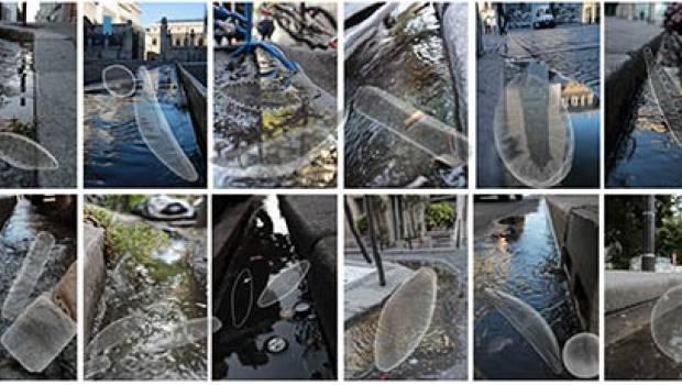Les micro-organismes des caniveaux urbains sont-ils des micro-stations d'épuration?