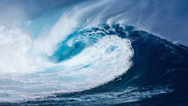 L'Institut de l'Océan: le nouveau centre de recherche dédié à la vie marine
